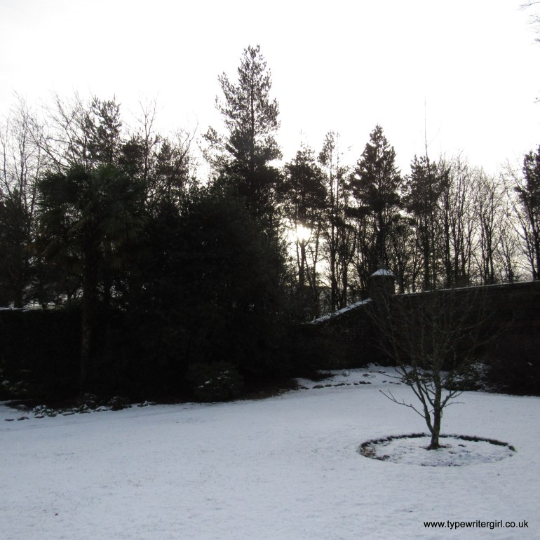winter scene at Rowallane Gardens