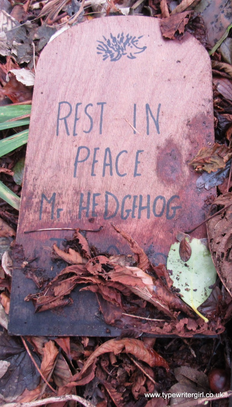 hedgehog sign at Sheils Houses