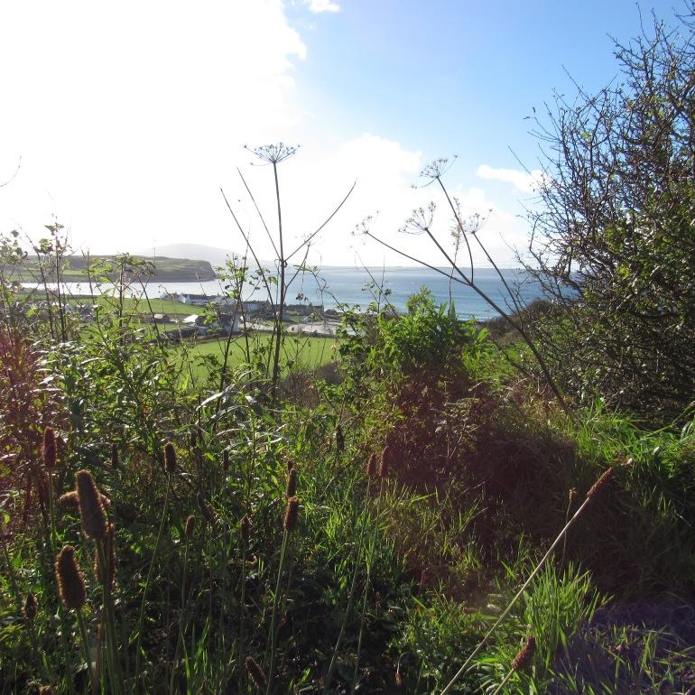 Rathlin Island 1