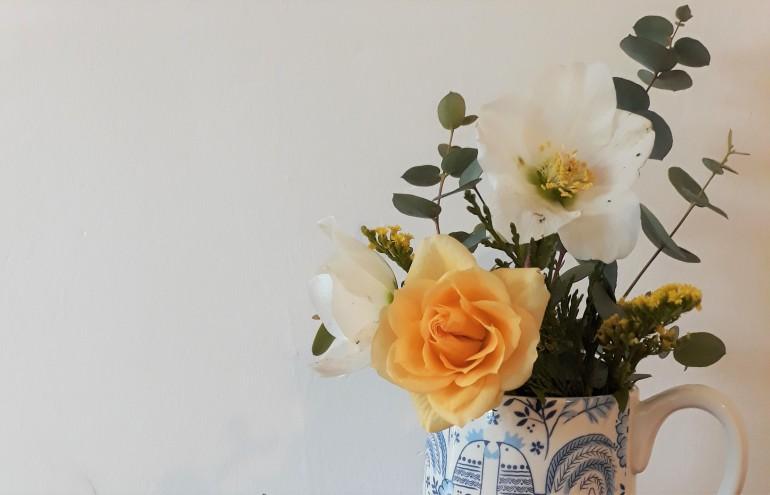 roses indoors