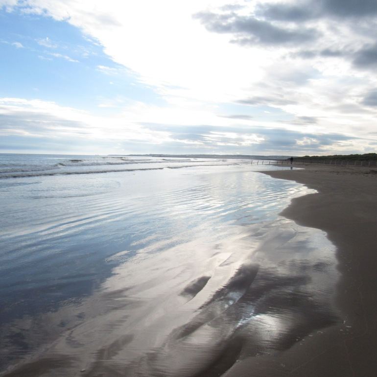 coast 5